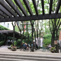 New York: The Big Green Apple